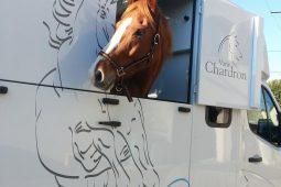 Transports Spanu | Van Cheval 2